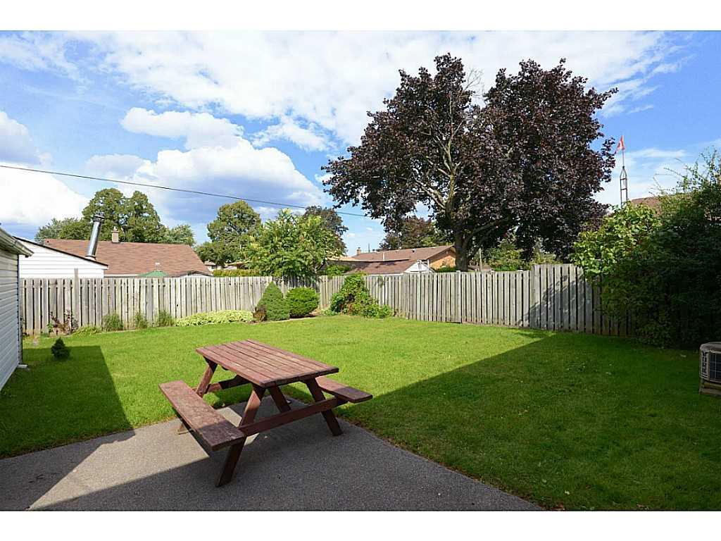 55 Burfield Avenue - Yard/Garden.
