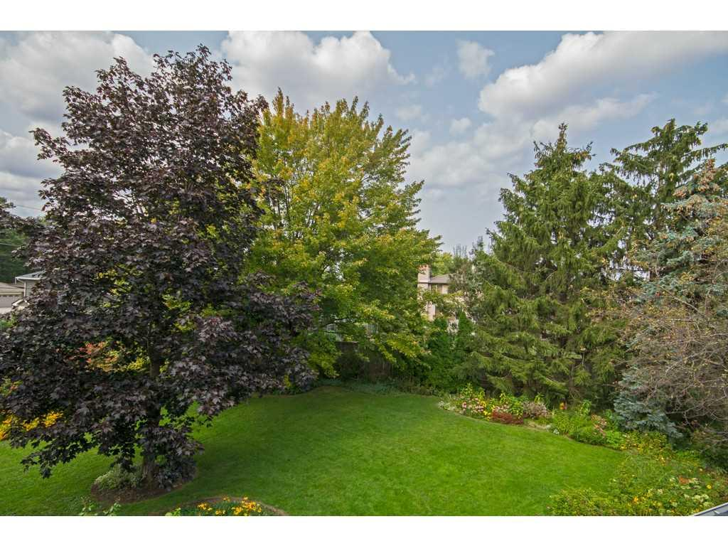 20 Plateau Place - Yard/Garden.