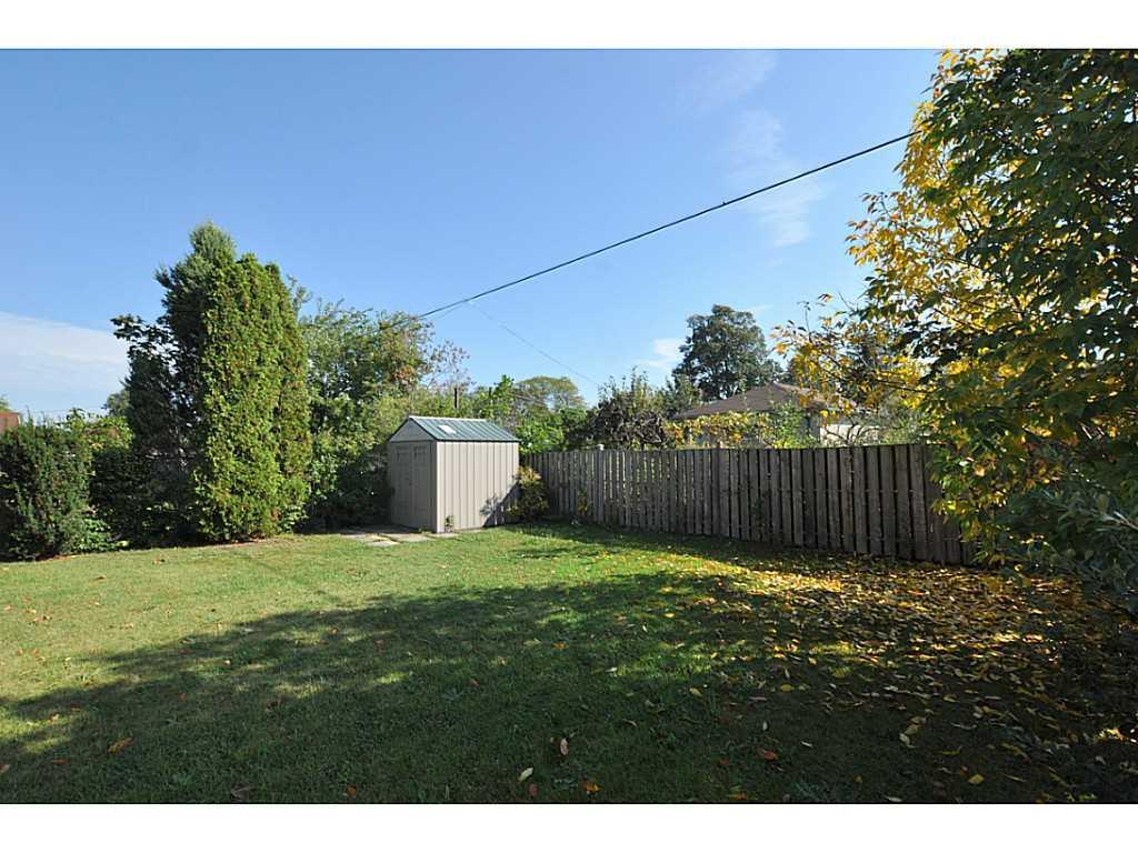 97 Purdy Crescent - Yard/Garden.