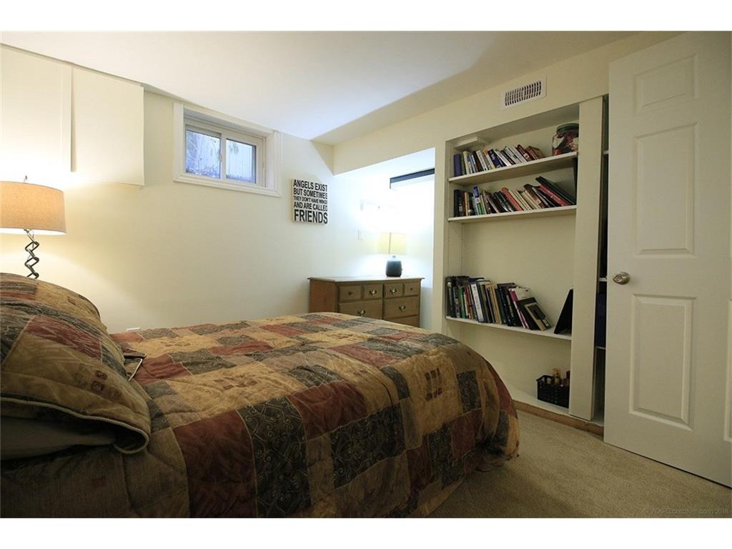17 Carrington Court - Basement Bedroom
