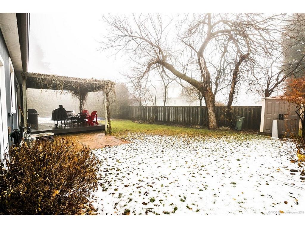 17 Carrington Court - Backyard