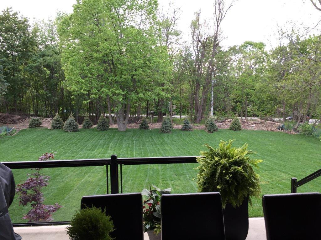 731 Montgomery Drive - Backyard - Summer