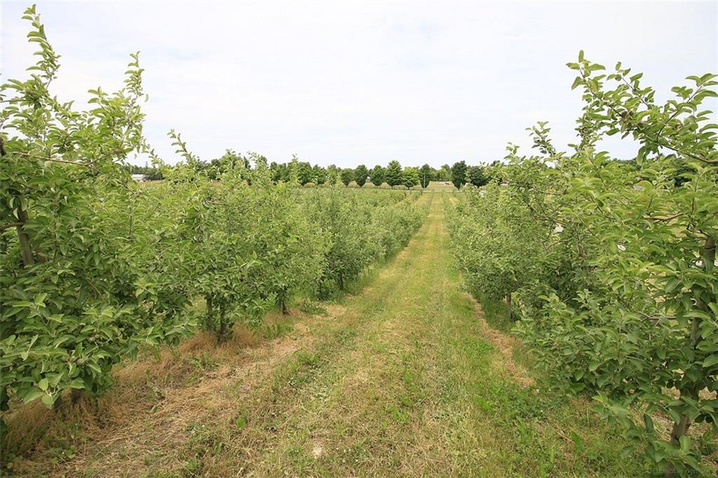 1453 Milburough Line -